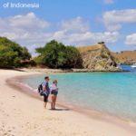 Komodo Island Tour