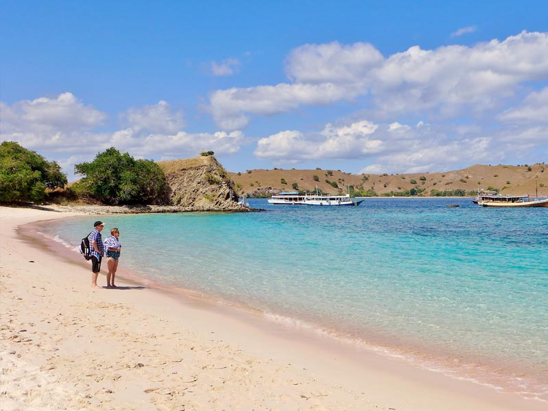 Komodo Tour From Labuan Bajo: Pink Beach