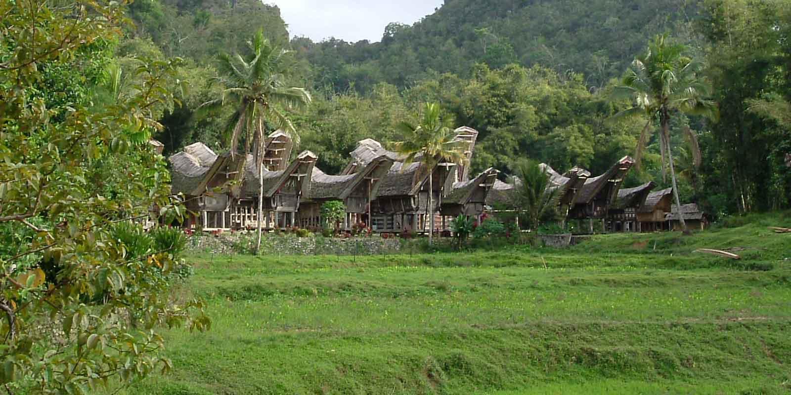 sulawesi holiday tour